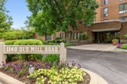 1140 Old Mill Road Unit #208F, Hinsdale image