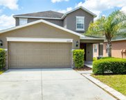 10629 Shady Preserve Drive, Riverview image