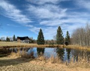 42044B Twp Rd 463, Rural Wetaskiwin County image