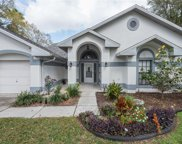 1416 Clarion Drive, Valrico image