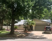 15921 Country Farm Place, Tampa image