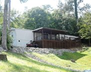 1361 County Road 3099, Double Springs image