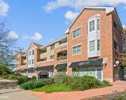 2300 Chestnut Avenue Unit #307, Glenview image