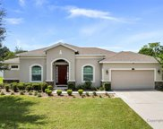 13155 Weatherstone Drive, Spring Hill image