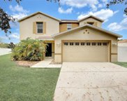 13502 Copper Belly Court, Riverview image