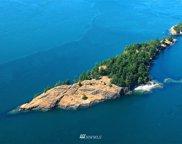 0 XX Ram Island, Lopez Island image