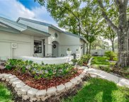 3899 Tanager Place, Palm Harbor image