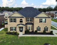 204 Cayden Court, Chapin image