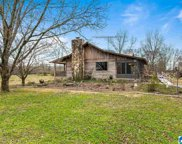 10435 Hwy 411, Odenville image