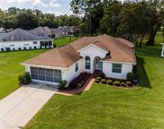 11679 Sw 72nd Circle, Ocala image