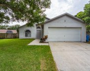 11114 Windpoint Drive, Tampa image