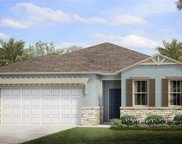 14519 Topsail Dr, Naples image