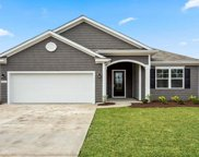 420 Cypress Springs Way, Little River image