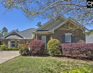 324 Fairway Pond Court, Chapin image