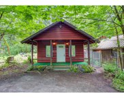 71042 E SALMONBERRY  RD, Rhododendron image