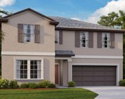10515 Strawberry Tetra Drive, Riverview image
