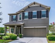 11244 Shelter Cove Loop, New Port Richey image