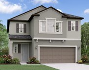 4216 Cadence Loop, Land O' Lakes image