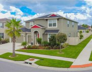 12212 Angel Mist Place, Riverview image