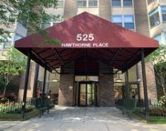 525 West Hawthorne Place Unit 1608, Chicago image