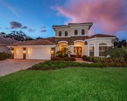 3006 Willow Oaks Way, Clearwater image