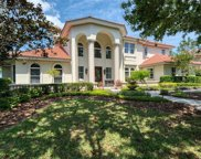 1175 Skye Lane, Palm Harbor image