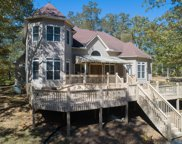 317  Sipsey Pines Rd, Arley image