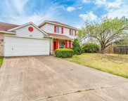 3417 Forest Creek Drive, Fort Worth image