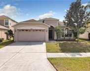 4208 Tarkington Drive, Land O' Lakes image