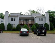 96 Valley  Drive Unit 96, New Milford image