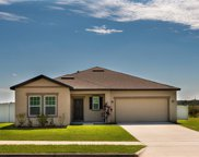 16317 Blooming Cherry Drive, Groveland image