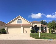 22743 Beltrees Court, Land O' Lakes image