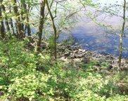 0245 PAGODA RD, Deer River image