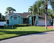 14989 Mahoe  Court, Fort Myers image