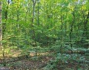 Wilderness Woods   Lane, Rhoadesville image