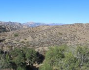 31029 Hasley Canyon Road, Castaic image