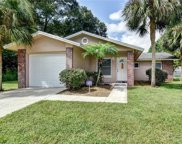 670 W Tall Pine Terrace, Deland image