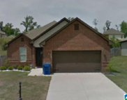4370 Winchester Hills Drive, Clay image