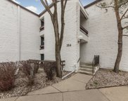 354 W Miner Street Unit #2A, Arlington Heights image
