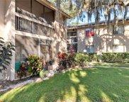 5501 Loblolly Court Unit 163B, Tampa image