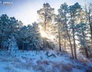 19110 White Pine Lane, Colorado Springs image