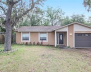 10417 N Connechusett Road, Tampa image