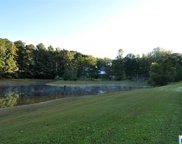 597 Dogwood Lakes Dr, Chelsea image