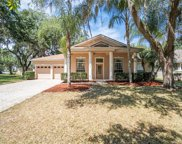 2301 Rambling Oaks Way, Kissimmee image