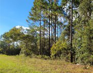 1536 W Palmview Drive, Citrus Springs image