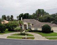 3618 Swans Landing Drive, Land O' Lakes image