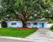 4503 S Renellie Drive, Tampa image