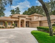 8212 Valrie Lane, Riverview image