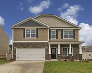685 Collett Drive, Blythewood image