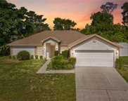 13141 Hanley Drive, Spring Hill image